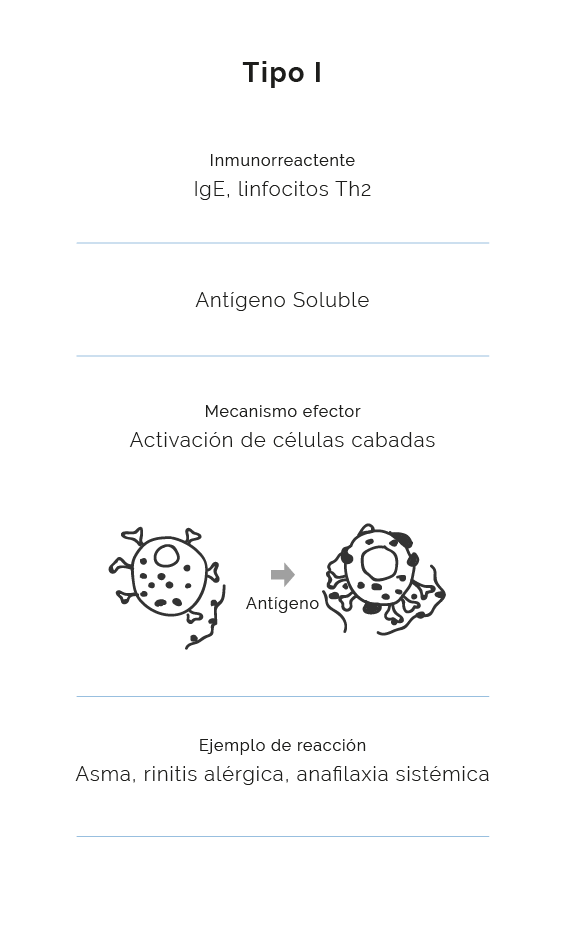 reacción alérgica tipo 1